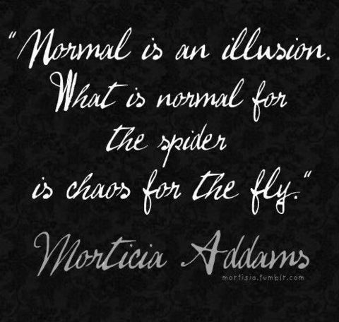 Normal is an illusion the single girls guide to dating normal is an illusion altavistaventures Choice Image